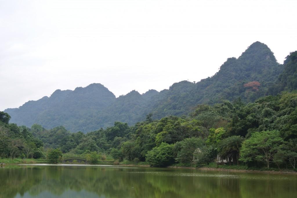 Cuc Phuong国立公園