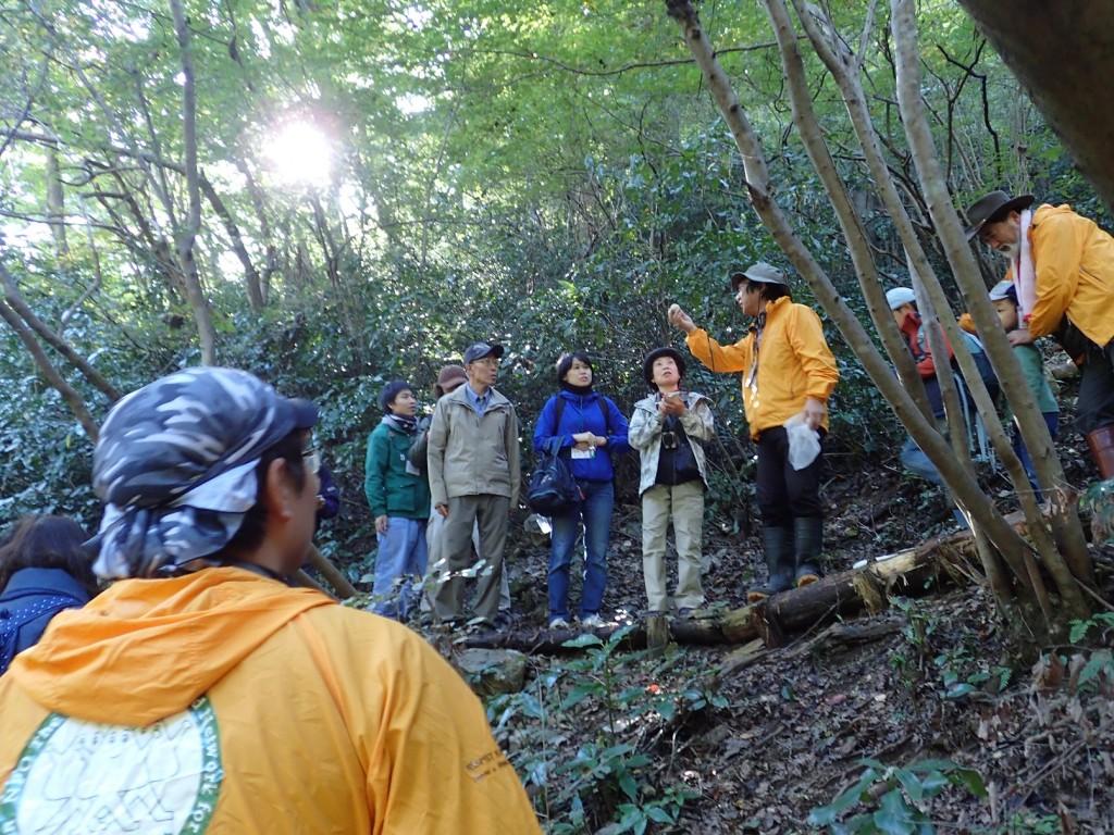 改善した環境を活用した自然観察会