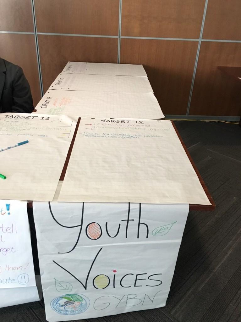 Youth Voice:SBIの会場内で参加者から、生物多様性に関する個人レベルでの活動に関しての意見を集めました。