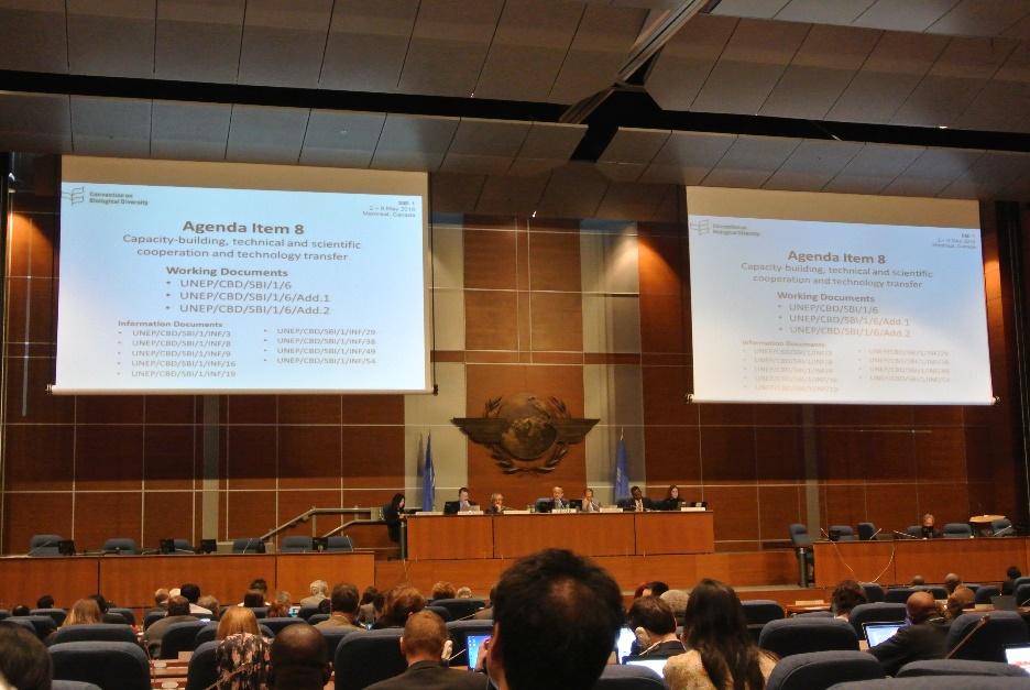 議題項目8「キャパシティビルディング・技術的科学的な協働・技術移転」の様子