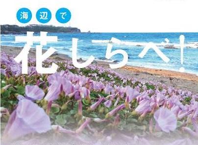 日本自然保護協会の実施する「自然しらべ」