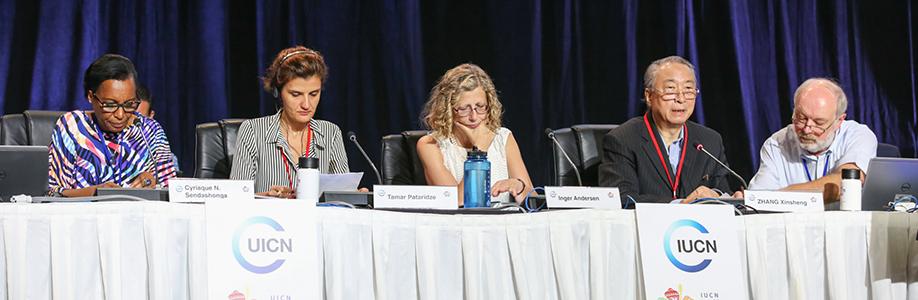 写真 IISD/ENB http://www.iisd.ca/iucn/congress/2016/1sep.html