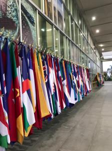 生物多様性条約COP13の会議場前には各国の国旗が並べられています。
