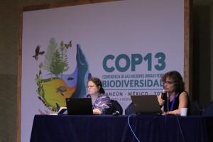 生物多様性条約事務局の主流化を扱う部局を統括するエイミーさんと、IUCN環境教育コミュニケーション委員会のカレンさん